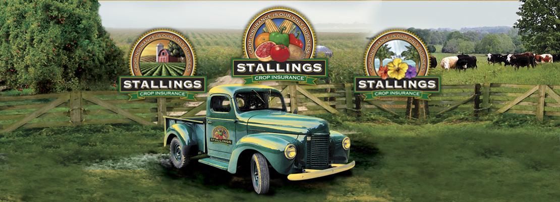 Stallings Crop Insurance